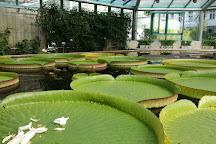 Botanická Zahrada Liberec, Liberec, Czech Republic