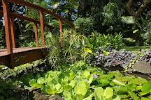 Maire Nui Botanical Gardens, Rarotonga, Cook Islands