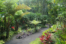 Hawaii Tropical Botanical Garden, Papaikou, United States