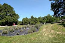 Shawnee Hills, Illinois, United States