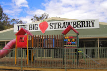 The Big Strawberry, Koonoomoo, Australia