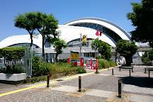 Tokyo Tatsumi International Swimming Center, Koto, Japan