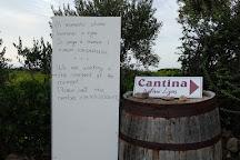 Cantina Ligios, La Muddizza, Italy