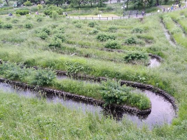 Hotaru Dōyō Park