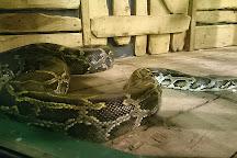Paignton Zoo Environmental Park, Paignton, United Kingdom