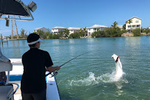 Sea Change Sportfishing, Key West, United States