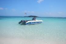 Passion Bleue Caraibe, Sainte Rose, Guadeloupe
