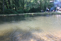 Buck Creek Trout Farm, Marion, United States