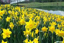 Daniel Stowe Botanical Garden, Belmont, United States