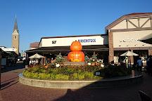 Toki Premium Outlets, Toki, Japan