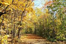 Parc-Nature-du-Bois-de-l'ile-Bizard, Montreal, Canada