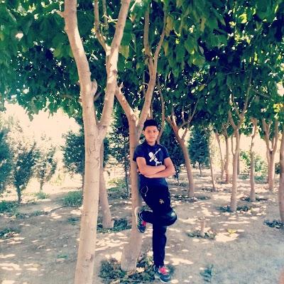 Ghoryan