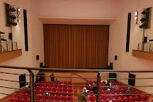 Teatro Toniolo, Venice, Italy