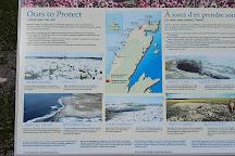 White Rock Walking Trail, Flower's Cove, Canada