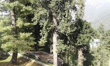Alpine Hotel Vacation Homes nathia-gali