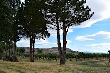 Cascade Cliffs Vineyard & Winery, Wishram, United States