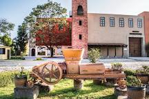 Viñedos La Redonda, Ezequiel Montes, Mexico