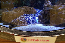 The Shore Oceanarium, Melaka, Malaysia