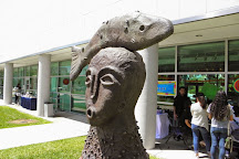 Frost Museum of Art, Miami, United States