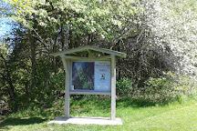Proctor Park Conservation Area, Brighton, Canada