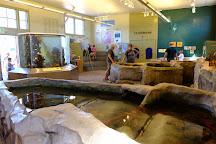Port Townsend Marine Science Center, Port Townsend, United States