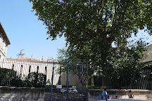 Musée Calvet, Avignon, France