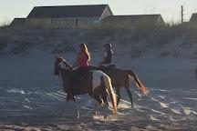 Amelia Island Horseback Riding, Fernandina Beach, United States