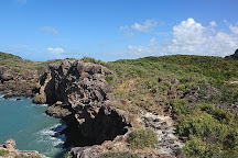 Cape Hillsborough National Park, Cape Hillsborough, Australia