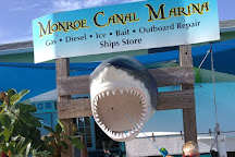 Monroe Canal Marina, Saint James City, United States
