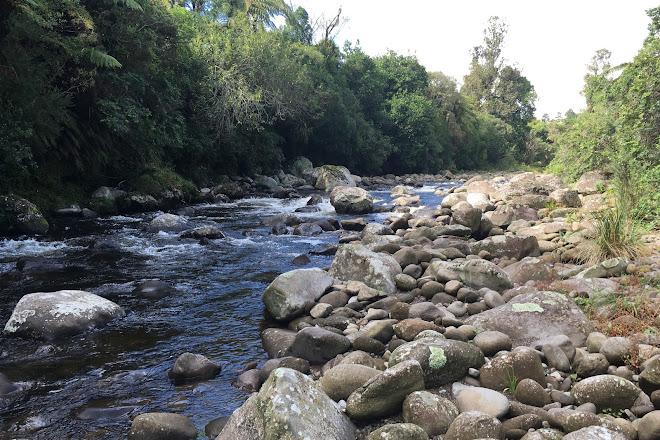 Koru Pa, New Plymouth, New Zealand