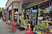 Pearl Street Mall, Boulder, United States