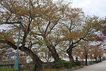 Kanazawa Walking Tours, Kanazawa, Japan