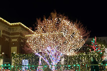 Fayetteville Downtown Square & Gardens, Fayetteville, United States