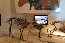 Fossil Discovery Center, Chowchilla, United States