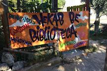 Hekab Be Biblioteca de Akumal, Akumal, Mexico