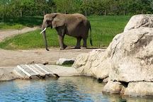 Indianapolis Zoo, Indianapolis, United States