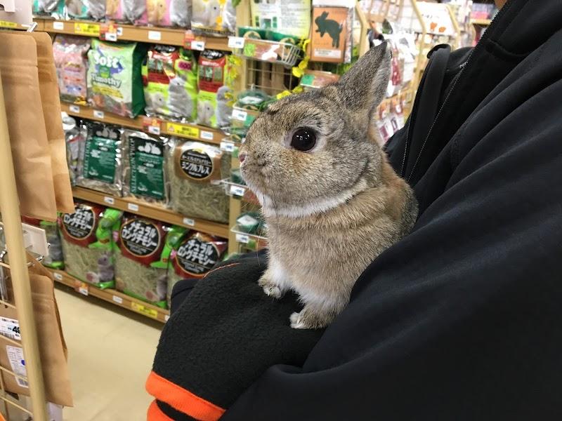 ペットワールドアミーゴ 藤沢店