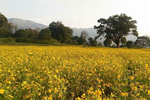 Araku Valley, Visakhapatnam, India