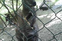 L'Oasi degli Animali, San Sebastiano da Po, Italy