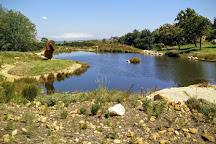 Dylan Lewis Sculpture  Garden, Stellenbosch, South Africa