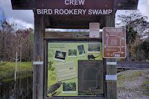 Bird Rookery Swamp, Naples, United States