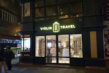 Violin Travel, Budapest, Hungary