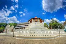 Nefelibata Travels (Pvt) Ltd, Colombo, Sri Lanka