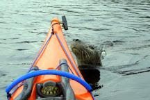Ewe Canoe, Gairloch, United Kingdom