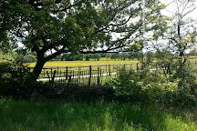 Woodgate Valley Country Park, Birmingham, United Kingdom