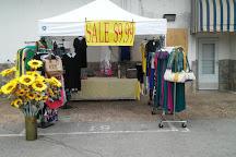 Nashville Flea Market, Nashville, United States