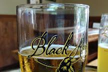 Black Raven Brewing Company, Redmond, United States