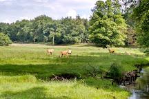 Wildpark Eekholt, Bad Segeberg, Germany
