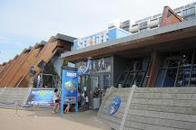 Sea Life Scheveningen, The Hague, Holland