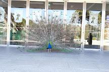 Pabellon de los Jardines de Cecilio Rodriguez, Madrid, Spain